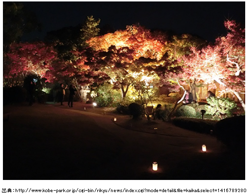 須磨離宮公園ライトアップ3