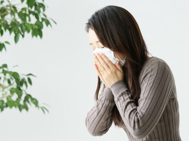 花粉症時期症状2