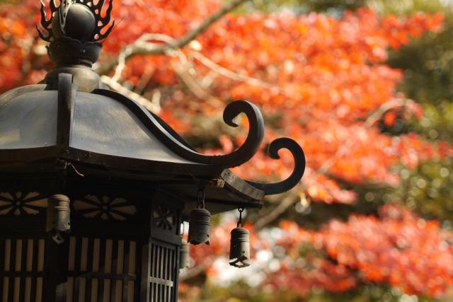 紅葉高台寺