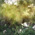 花粉症時期症状1