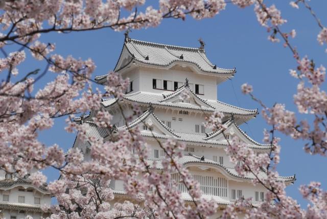 花見大阪2